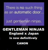GENTLEMAN NINJAS ARE CANON by AleItaly1998