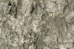Stone Texture - 10 by AGF81