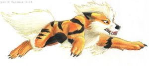 Leaping Arcanine by Tacimur