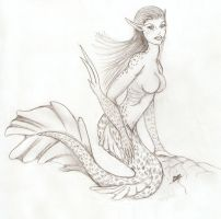 Mermaid Splice Contest by Stormyheavens