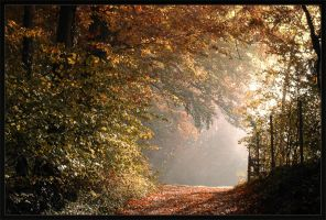 The last lightray by FrederikM