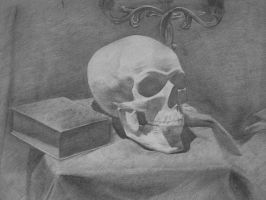 Skull pencil studies by doredore
