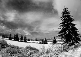 winter time by thanka8