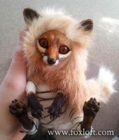 Fox Spirits Art Dolls - WIP Teaser 2 by Foxfeather248
