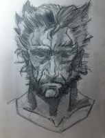 James Howlett aka Logan aka the Wolverine by M4n1nm1rr0r