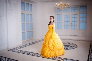 Beauty and the Beast: Belle by AmazingRogue