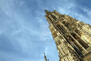 The cathedral in Ulm by Zekanna