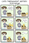 Cats Throughout History - Schrodinger by DoodleForFood