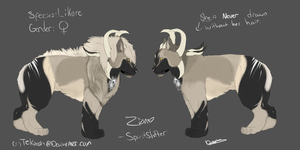 Zion Reference sheet by Allixi