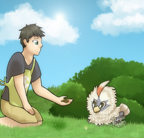 PTS| Befriend the Birb {DTC} by DevilsRealm