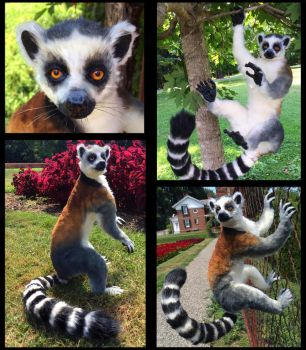 Ring Tailed Lemur Posable Doll by Blazesnbreezes