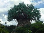 Tree of Life Unobstructed View by WDWParksGal