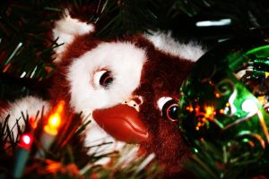 Gizmo Christmas 2011 by tastybedsore