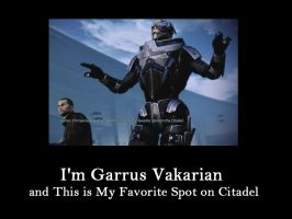 I'm Garrus and This is My Favorite Spot on Citadel by kamagawa