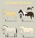 YFS SWB Auction WINNERS by Mendokusee