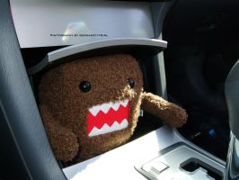 Domo-kun Stowaway. by GermanCityGirl