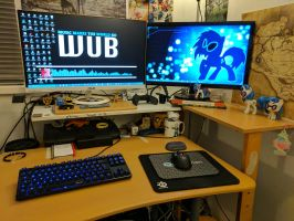 My Work-Station by CatusDruidicus