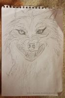 Angry wolf quick sketch by Aynarra