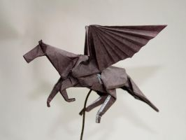 Pegasus - 2 by Dreams-Made-Flesh