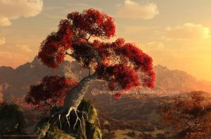 Blushing Bonsai by priteeboy