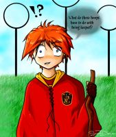 Weasley is our King by sweetdemise
