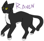 Raven by ForgottenWhispers7