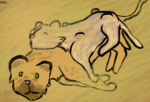 Lion Cubs by zepIyn