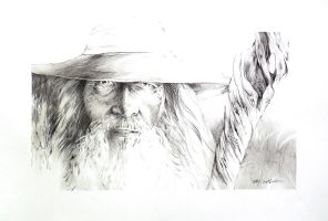 Gandalf the Grey by Abstractmusiq