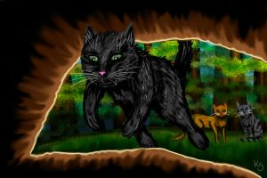 Hollyleaf - Trying to escape.. by NoreyDragon