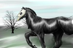 NEW CHARACTER - Dreamhorse by DikkeBobby