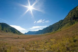 Bromo New by tommysebastian