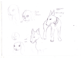 Dog sketches by TheIcedWolf