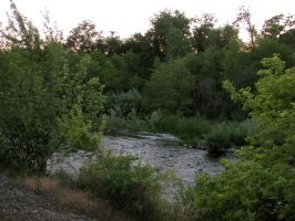 Umatilla River Walk 2 by Cyberpriest