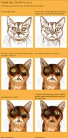 cat- step by step by greedy-peri