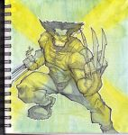 Sketchbook wolverine by ZipDraw