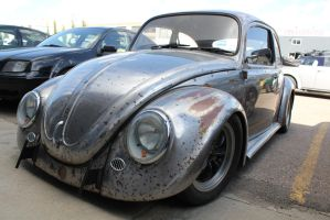 Ratified Beetle by KyleAndTheClassics