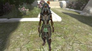 Cloth set for Herald of Xotli by tulx