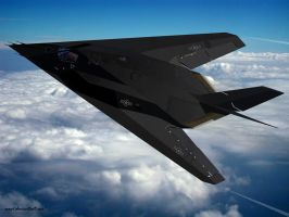 F-117 Nighthawk by EVOV1