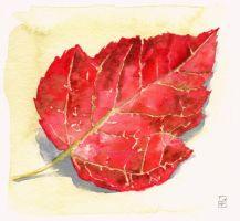 Red Autumn Leaf - Watercolours by GeeMassamArt