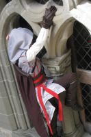 Elo Auditore climbing window by elodie50a