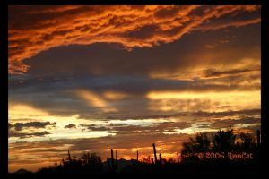 A Technicolor Monsoon Sunset by RooCat