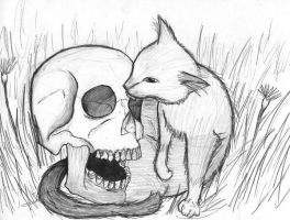 Kitty Skull Licking by kittytreats