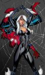 Spider Man And Black Cat by roygcomics
