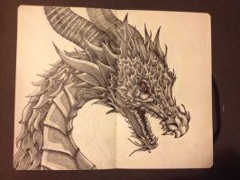 Alduin by toxicmask