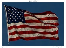 Proud US Flag by yellowcaseartist