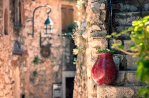 The Red Urn by ralucsernatoni
