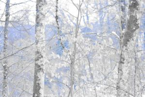 White and blue by 13love88