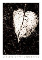 My Battered Heart by UrbanRural-Photo