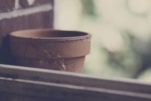 Old Pot by Rydgel
