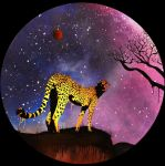 Cheetah at Night by cultureplasticart